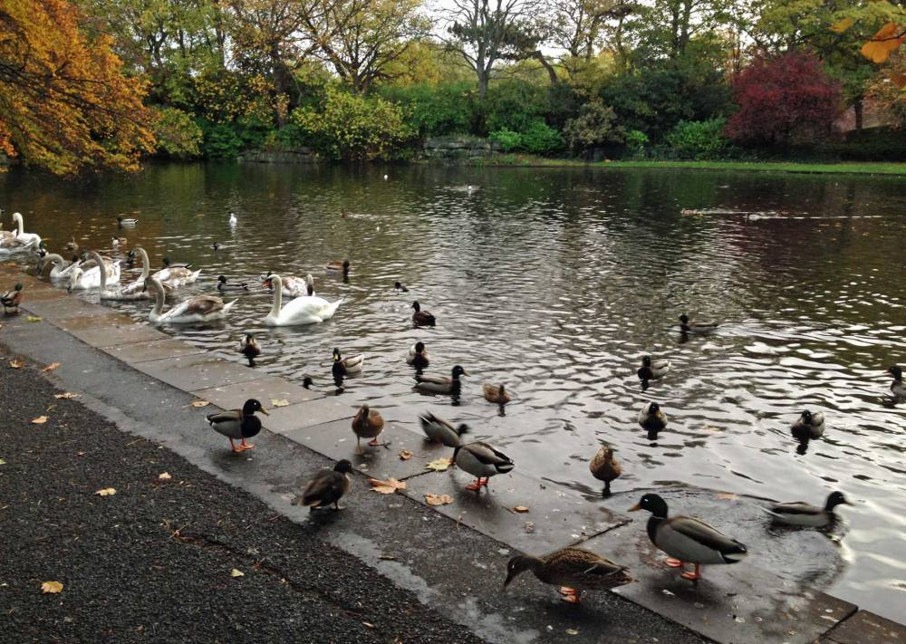 Stephen's Green Dublin
