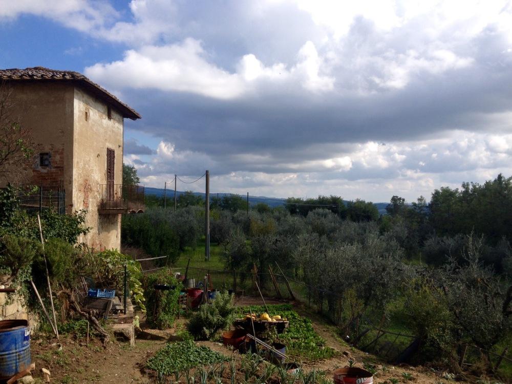 Garten in der Toskana