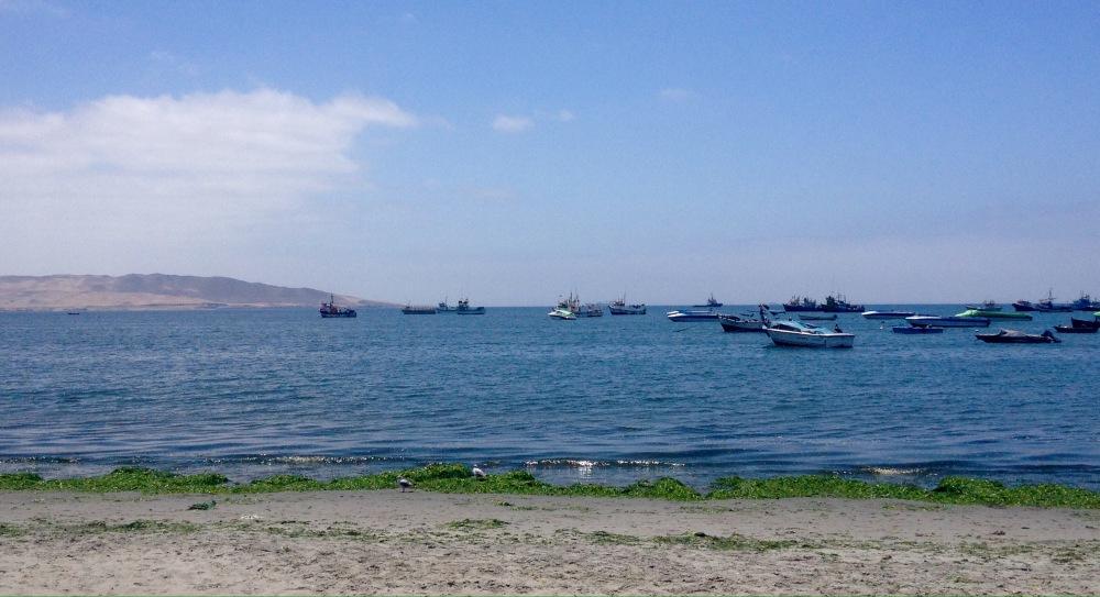 Fischerboote im Hafen von Paracas
