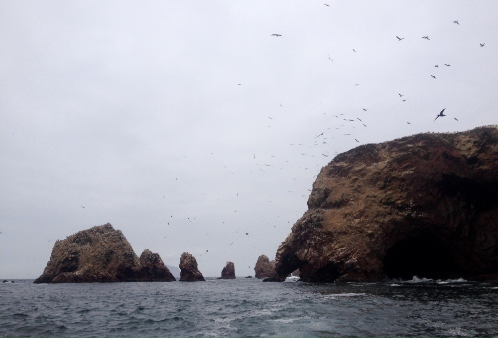 Islas Ballestas in Peru