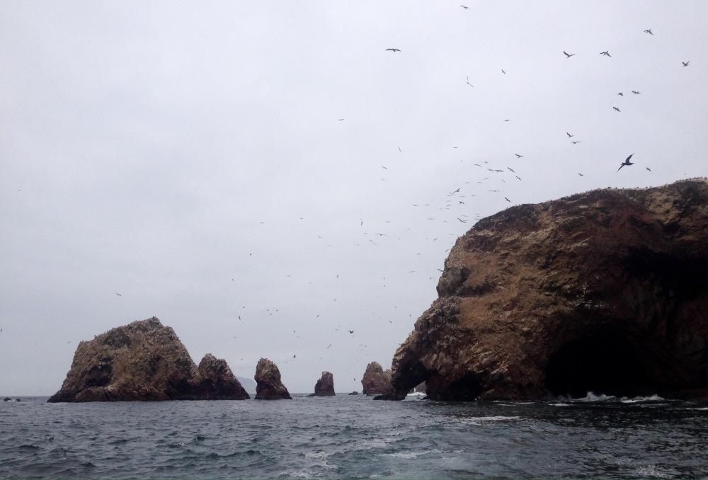 Islas Ballestas in Peru
