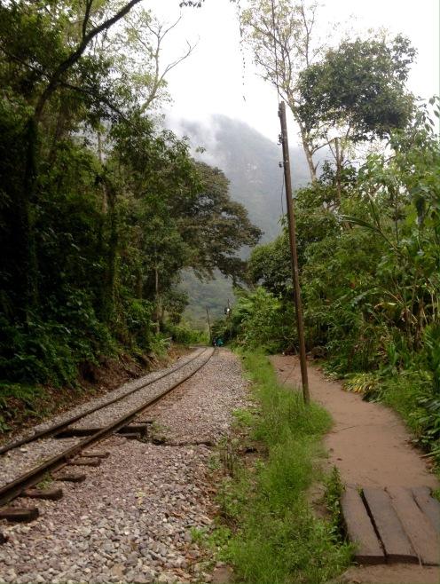 Von Hidroelectrica nach Aguas Calientes: Erstes Dschungel-Feeling kommt auf.