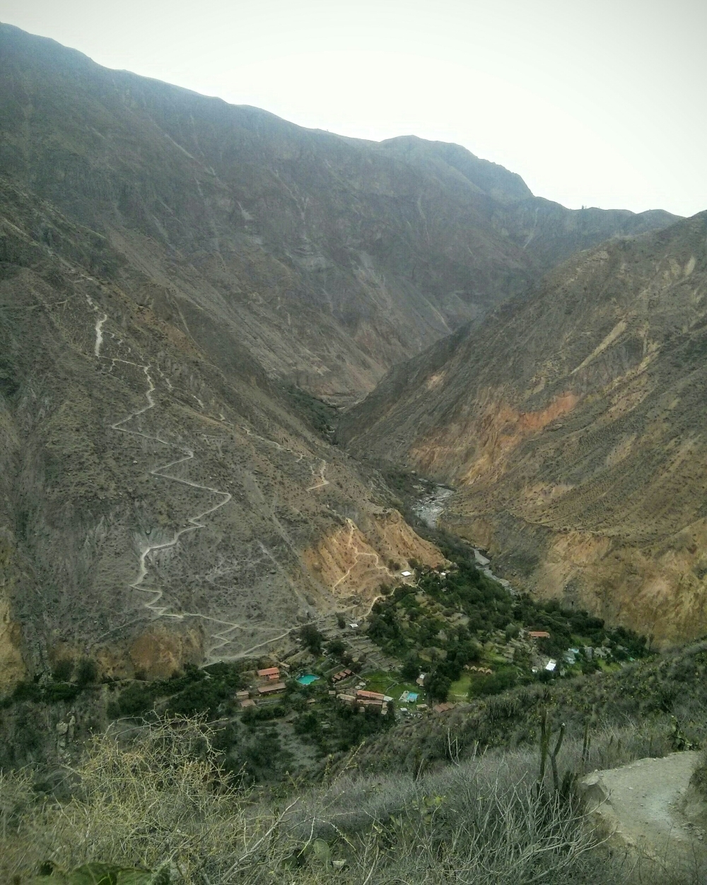 Oase Sangalle im Colca Canyon