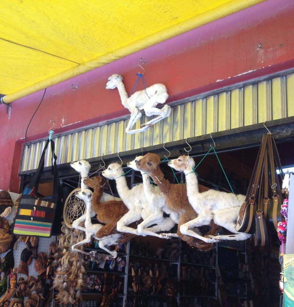Tote Lama-Babys auf dem Hexenmarkt von La Paz