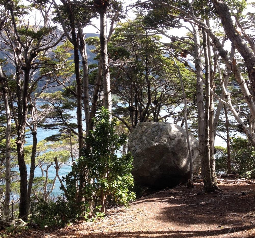 Wanderung durch den Nationalpark Tierra del Fuego