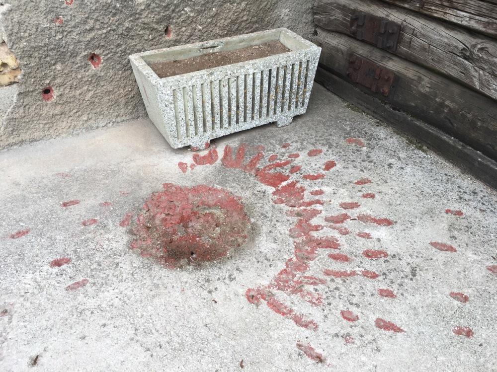 Rosen von Sarajevo